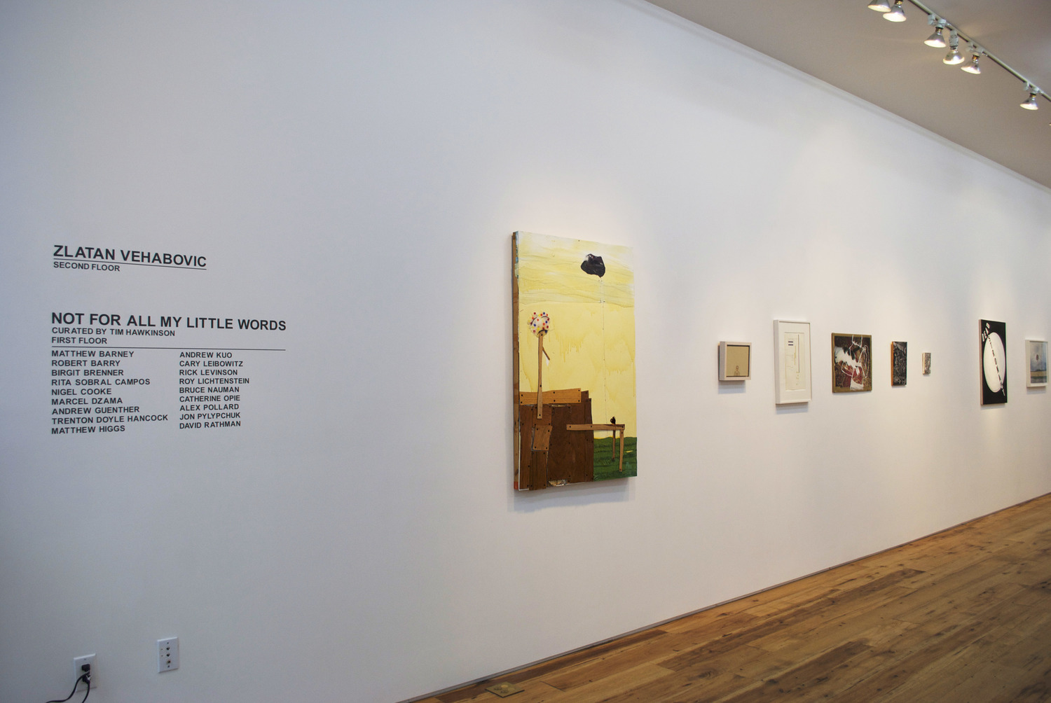 Not For All My Little Words  2014 Marc Straus Gallery