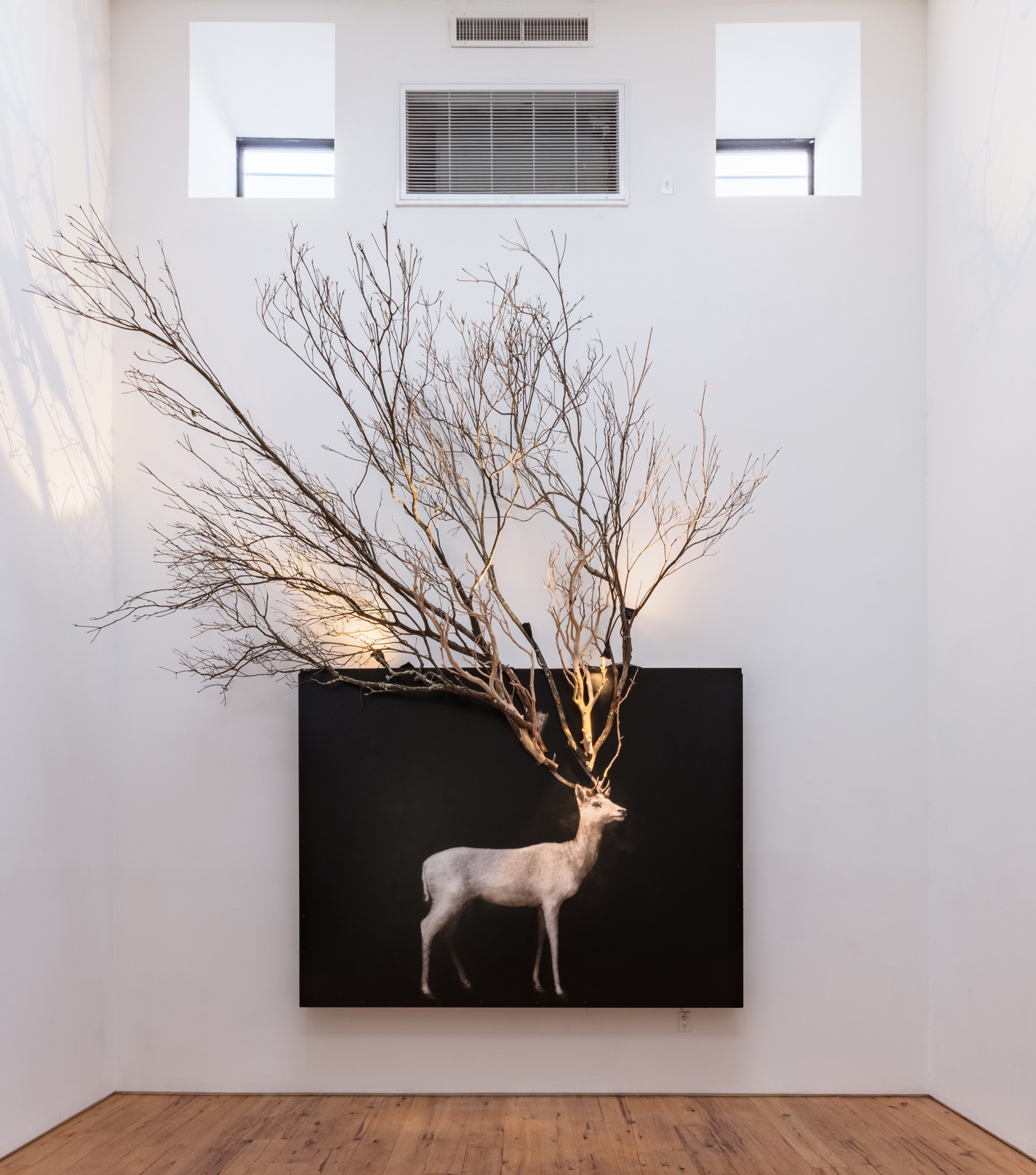 Todd Murphy 2016 Mixed media (Oil on plexiglas with archival digital print and branches) 74 x 96 inches Branches variable dimensions 2016 Marc Straus Gallery