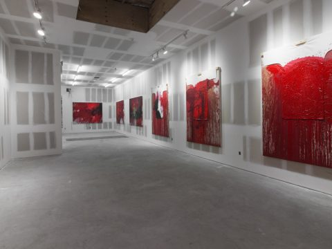 Hermann-Nitsch-Sept-2017-Installation-01
