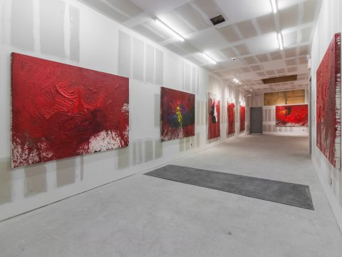 Hermann-Nitsch-Sept-2017-Installation-02