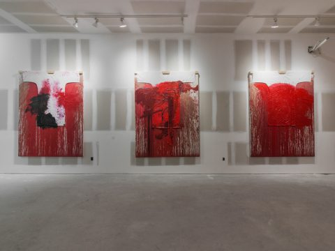 Hermann-Nitsch-Sept-2017-Installation-03