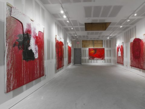 Hermann-Nitsch-Sept-2017-Installation-04