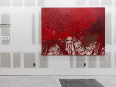 Hermann-Nitsch-Sept-2017-Installation-05