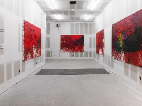 Hermann-Nitsch-Sept-2017-Installation-06