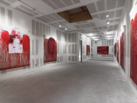 Hermann-Nitsch-Sept-2017-Installation-07