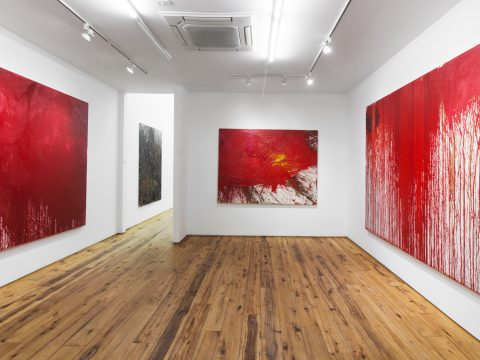 Hermann-Nitsch-Sept-2017-Installation-11
