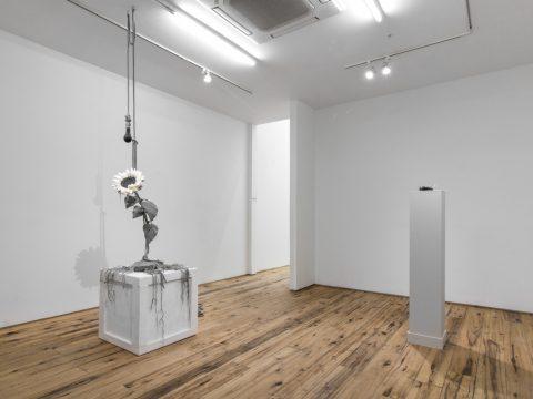 Silverthorne-Jeanne-MARC-STRAUS-Oct-2017-Installation-02