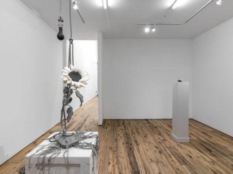 Silverthorne-Jeanne-MARC-STRAUS-Oct-2017-Installation-04