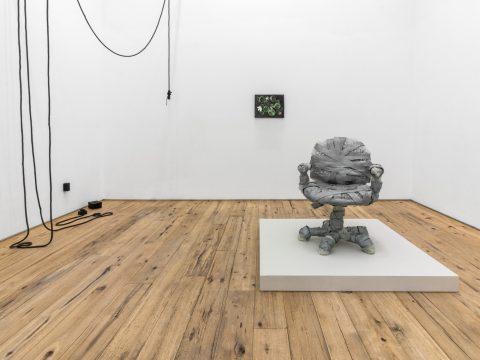 Silverthorne-Jeanne-MARC-STRAUS-Oct-2017-Installation-11