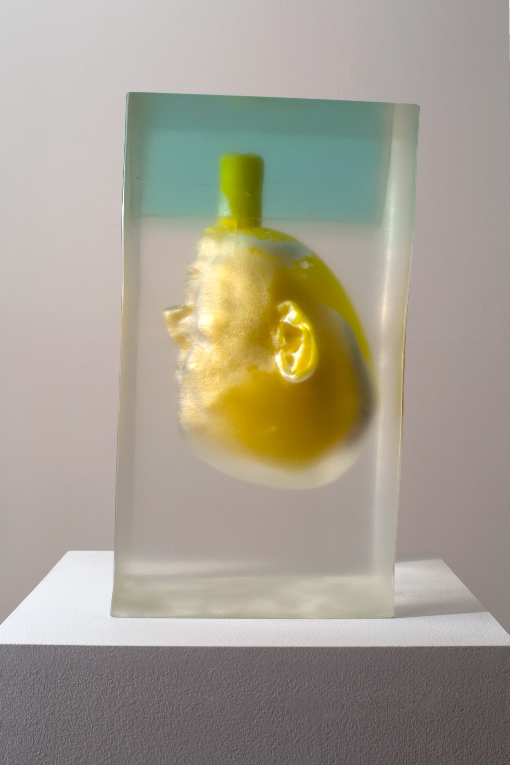 Rona Pondick 2018 Pigmented resin and acrylic 15 5/8 x 8 5/8 x 8 3/4 inches (39.7 x 21.9 x 22.2 cm) 2018 Marc Straus Gallery