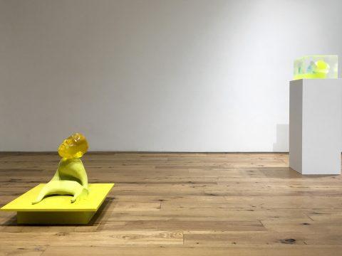 marc-straus-rona-pondick-2018-install-03