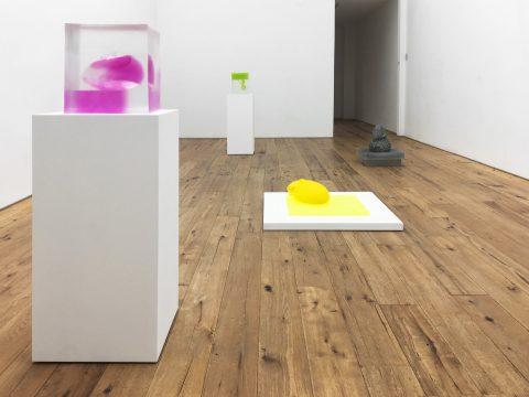 marc-straus-rona-pondick-2018-install-08