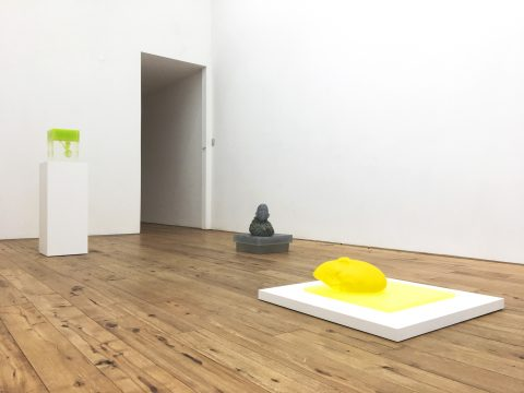 marc-straus-rona-pondick-2018-install-09