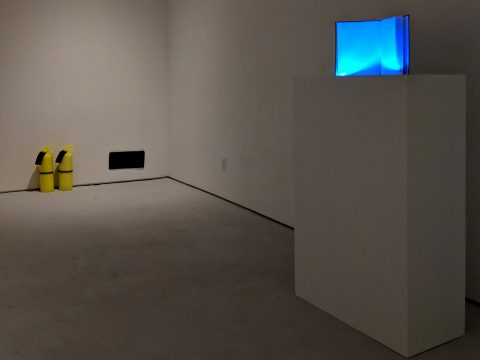 Jeanne-Silverthorne-Jan-2019-Installation-04