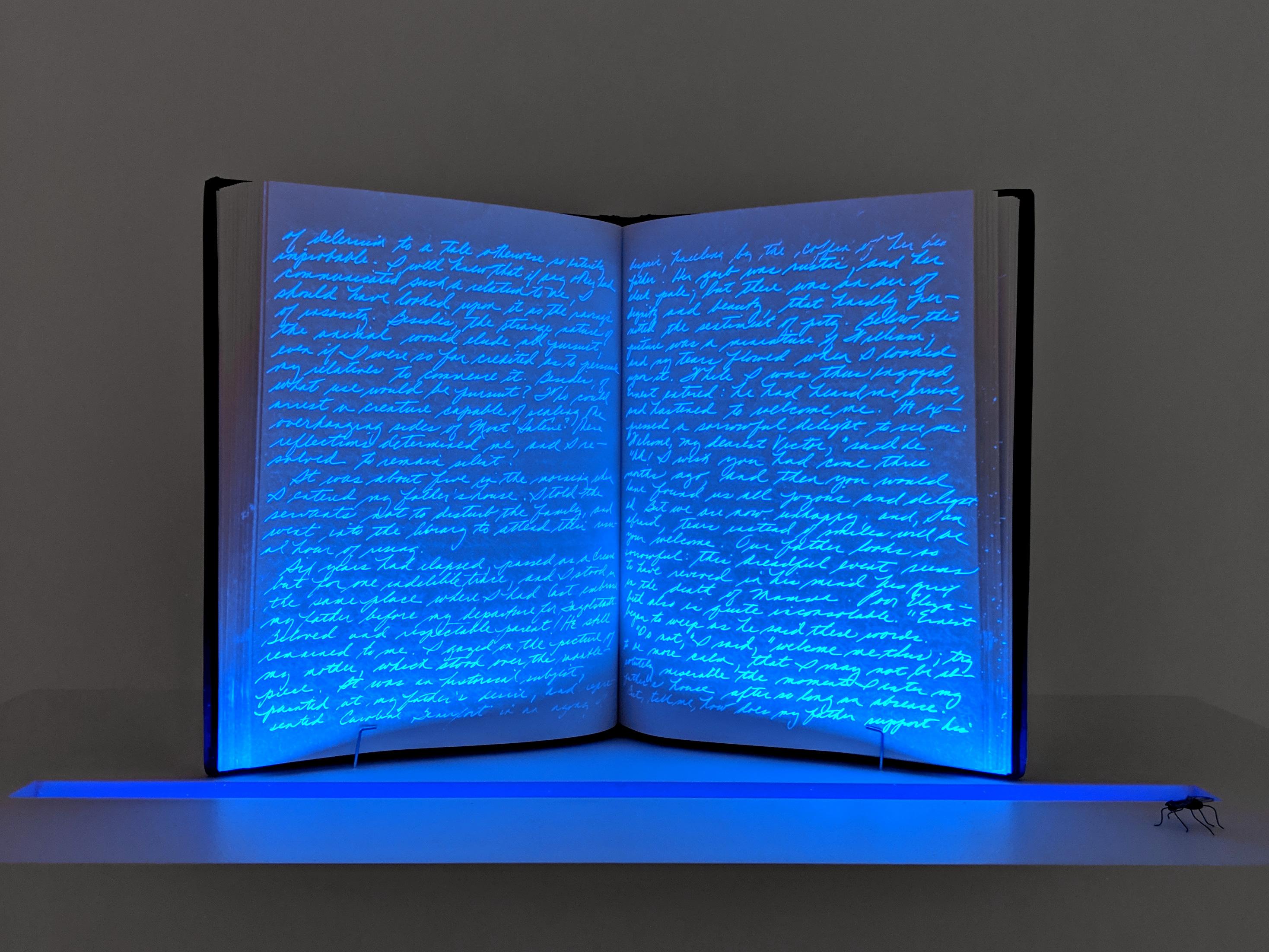 Jeanne Silverthorne  2019 Marc Straus Gallery