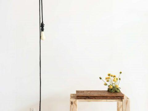 Studio Floor with Dandelions and Firefly
