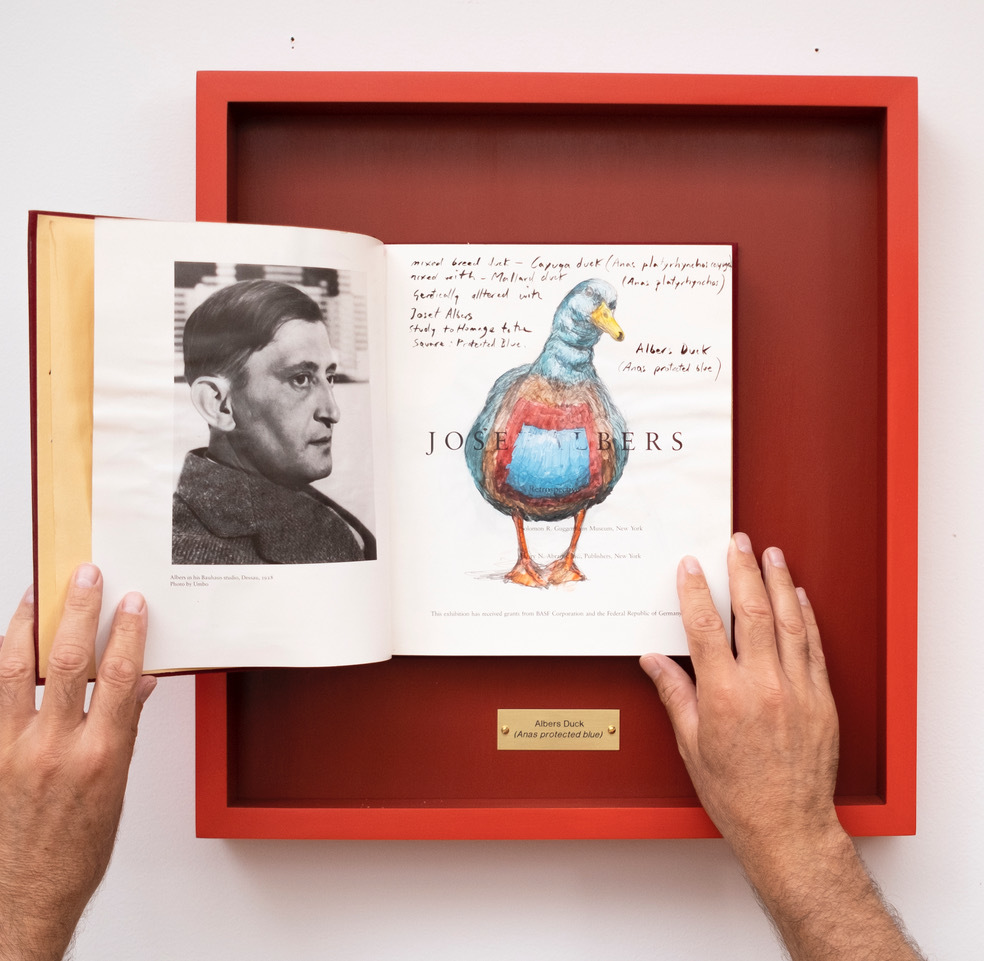 Duck Soup Albers Duck, 2020 Oil, gauche and graphite on found book framed 18 x 17 x 2 in 2020 Marc Straus Gallery