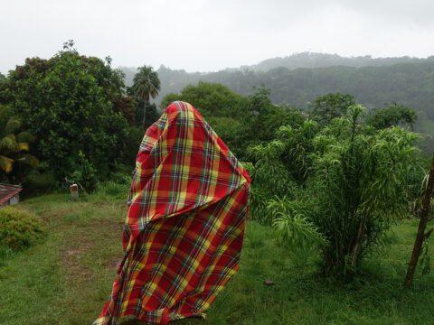 Madras Egungun on Martinique Hilltop