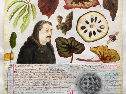 Small Botanical Illustration #3 (the Herbmaster, James Luna)